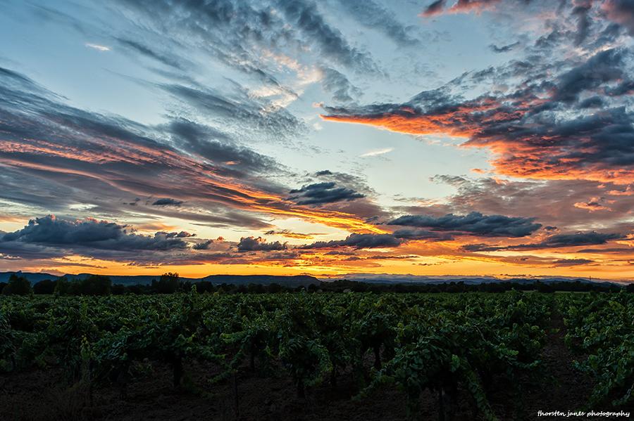Sunset @ Mas de Mestre